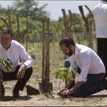 EBRARD DESTACA EN EL SALVADOR BENEFICIOS DEL PROGRAMA SEMBRANDO VIDA
